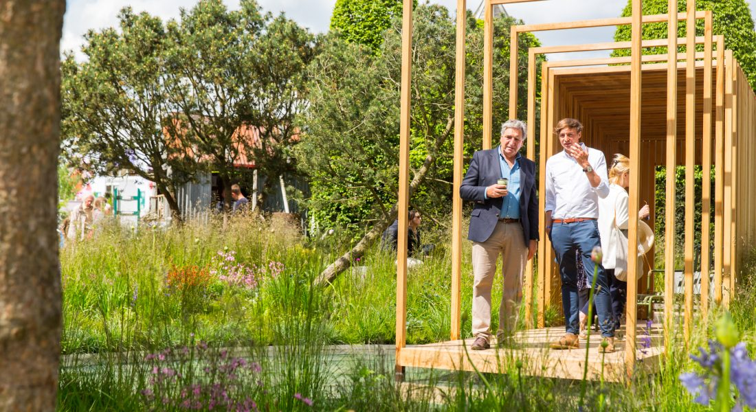 TheCloudyBayGardenRHSChelseaFlowerShow2016 Jim Carter Sam Ovens Designer2989 Piers Cunliffe PhotographyMay 23 2016 1100x600